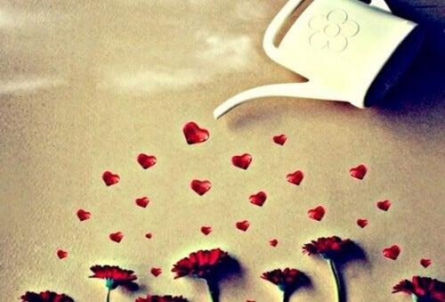 Vattnar med hjärtan