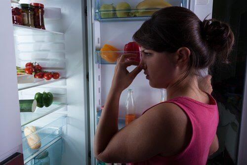 Illaluktande kylskåp