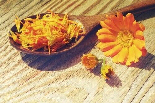 6-marigold