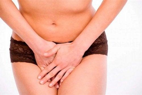 8 livsmedel för en god vaginal hälsa