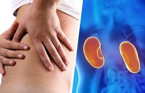 8 viktiga tecken på njurproblem