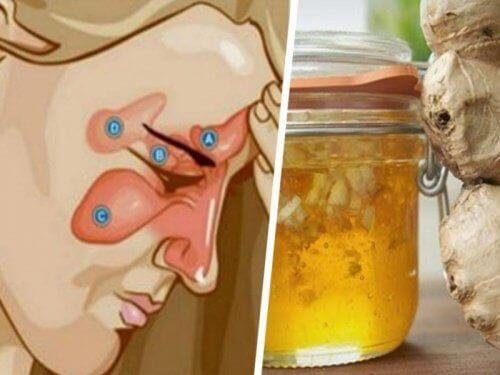 Två ingredienser som kan lindra bihåleinflammation