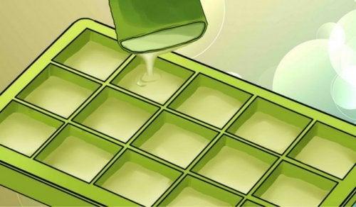 De imponerande fördelarna med att frysa aloe vera