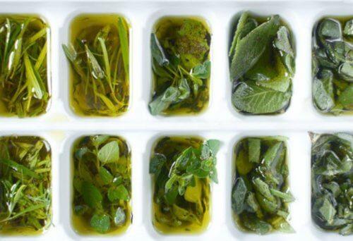färska örter i olivolja