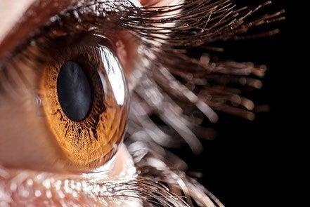 öga med artificiell hornhinna