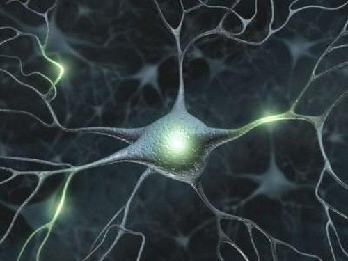 Problem med minnet kan vara sköldkörtelproblem