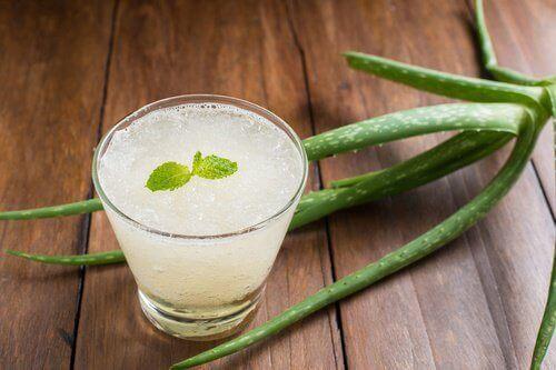 8 anledningar att dricka hemgjord aloe vera-juice