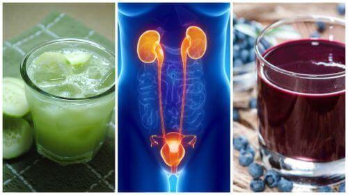 5 drycker för att motverka urinvägsinfektion