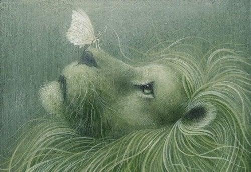 fjäril på lejons nos