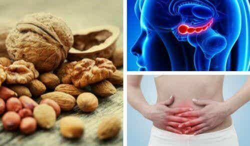 7 fördelar med valnötter du antagligen inte kände till