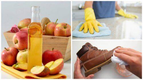 De 7 bästa sätten att använda äppelcidervinäger i hemmet