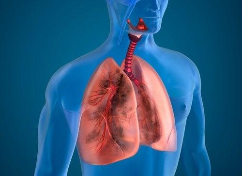 10 naturliga ingredienser för att rena röklungor