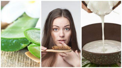Bekämpa håravfall med 6 hemgjorda lösningar