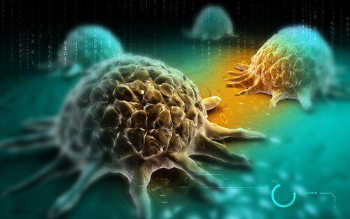Cancerceller