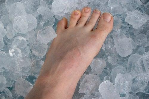 fot som vilar på is