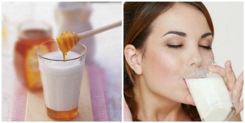 7 anledningar att dricka mjölk med honung innan läggdags