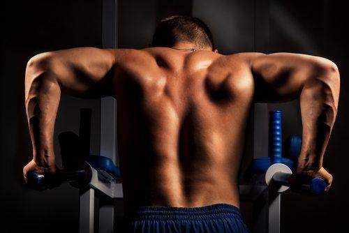 dips stärker armmusklerna