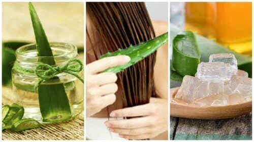5 aloe vera-behandlingar för att stärka ditt hår