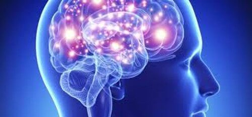 Hjärna med upplyst nervsystem