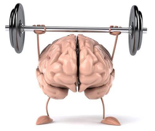 frisk hjärna