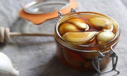 Honung och vitlök