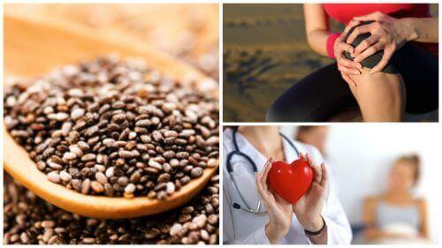 9 fantastiska fördelar med chiafrön