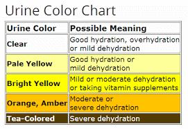Färgskala för din urin