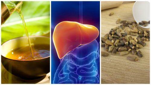 Motverka fettlever med 6 alternativa behandlingar