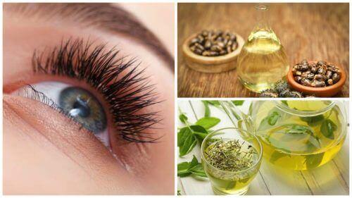Längre ögonfransar med sju naturliga behandlingar