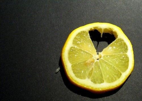 Citronskiva