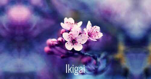 7 vackra japanska ord för att främja personlig tillväxt