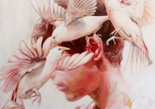 Fåglar kring man