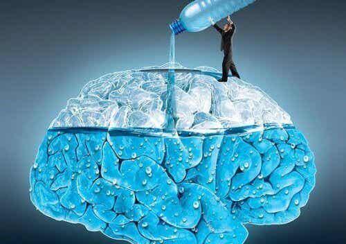 5 sätt som vatten påverkar din hjärna