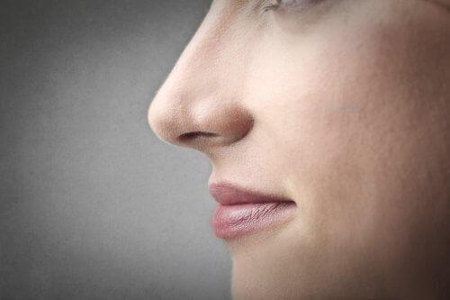 Näsan kan också påverkas av gener