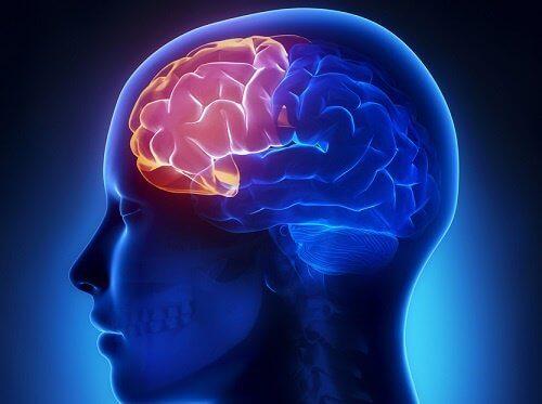 4 övningar för att bibehålla mental klarhet i hög ålder