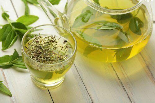 Grönt te i glas