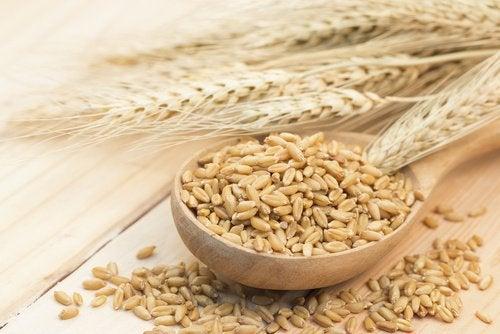 De bästa kolhydratskällorna: korn