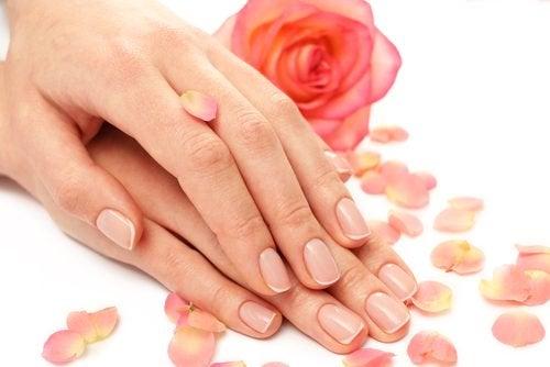lena ungdomliga händer på rosenblad