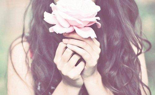 Rosa ros