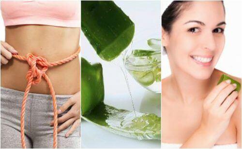 9 medicinska fördelar med aloe vera-gel