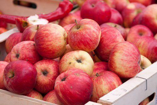 Äpplen i lådor