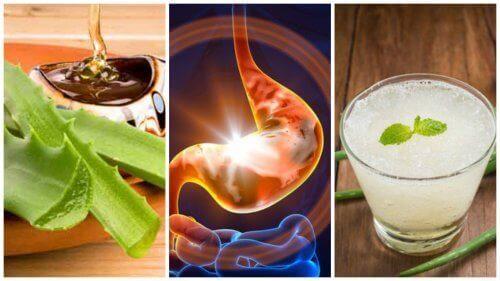 Behandla gastrit med en enkel, naturlig kur