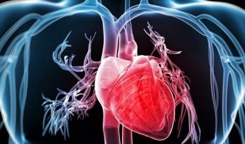 9 effektiva trick för att stärka ditt hjärta
