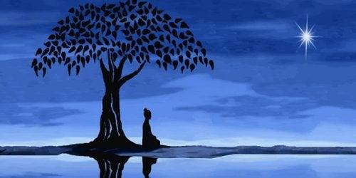 Mediterar under träd