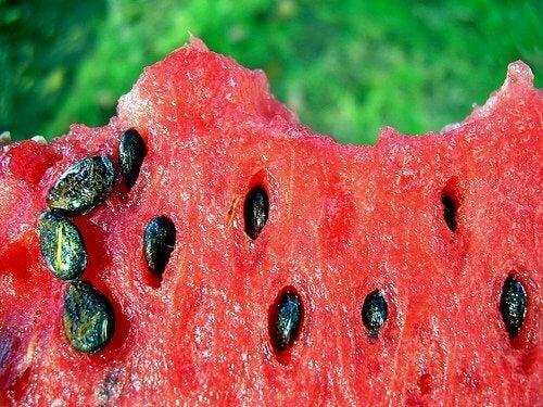 Dags för ett avkok på vattenmelonkärnor