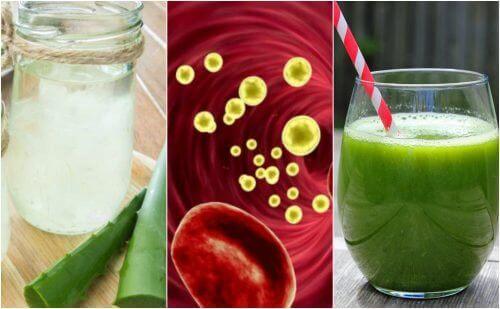 Rensa blodomloppet med 5 medicinska drycker
