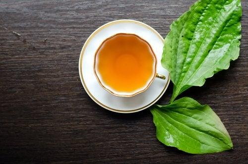 te som bränner fett