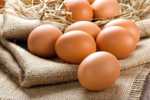 Ägg skyddar ögonen