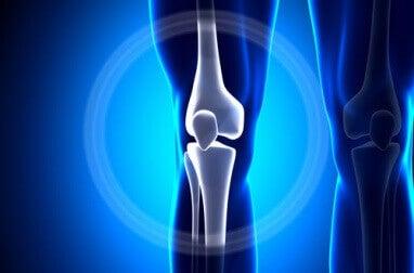 Kalcium stärker benen