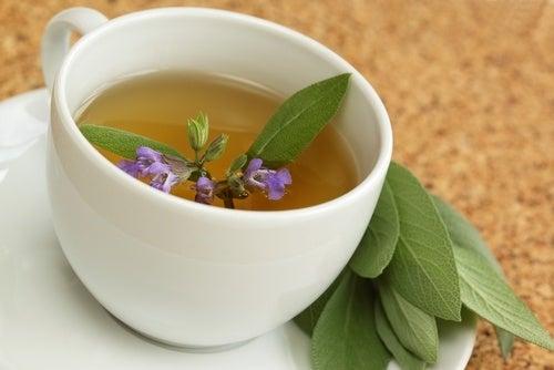 Te på salvia är en av flera naturliga kurer mot värmevallningar